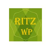Ritz Professional Multipurpose WordPress Theme