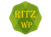 Ritz Professional Multipurpose WordPress Theme